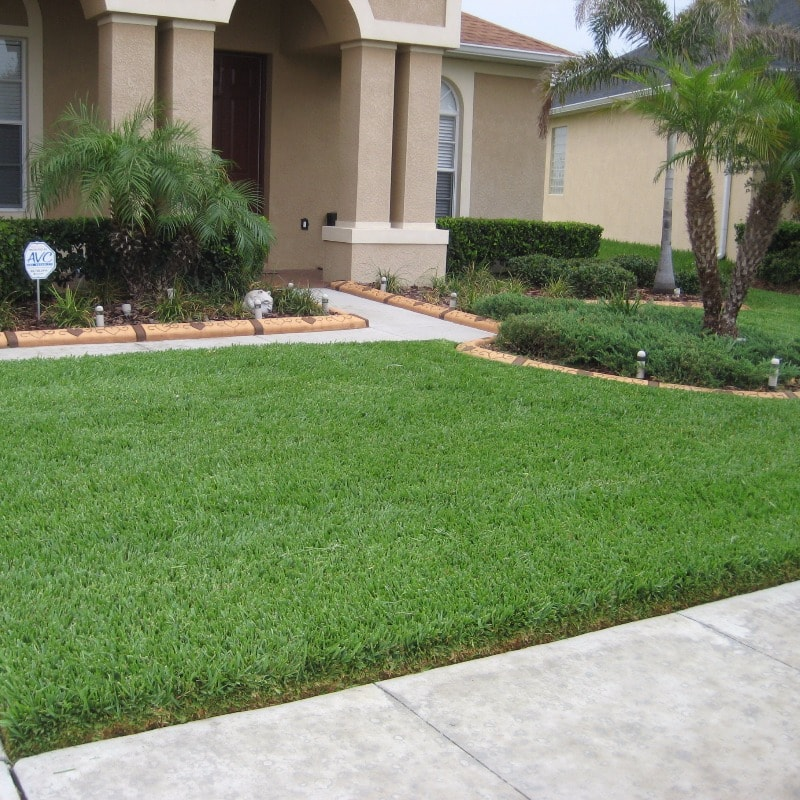 Palm City Fertilization Services